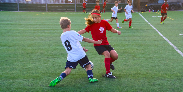 Villa-Parke Youth Soccer League