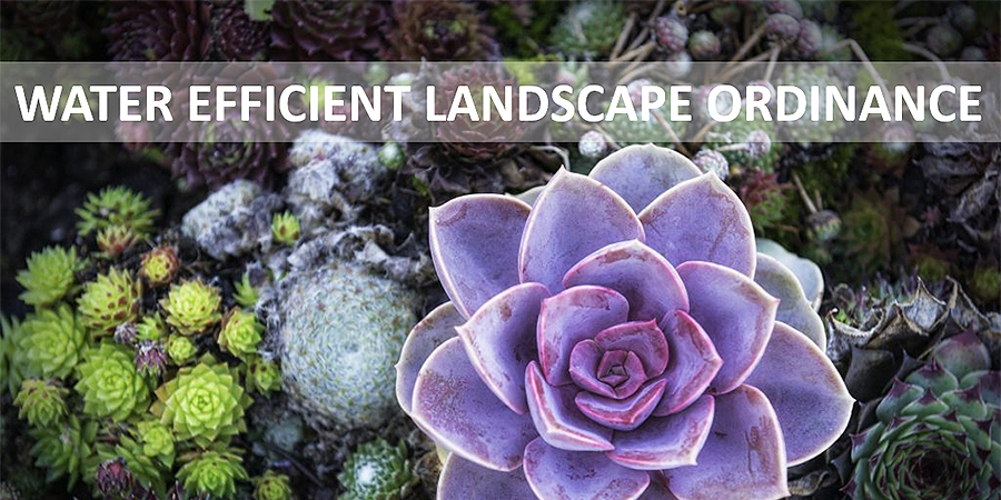 Water Efficient Landscape Ordinance